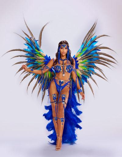 Cassius Blue Individual