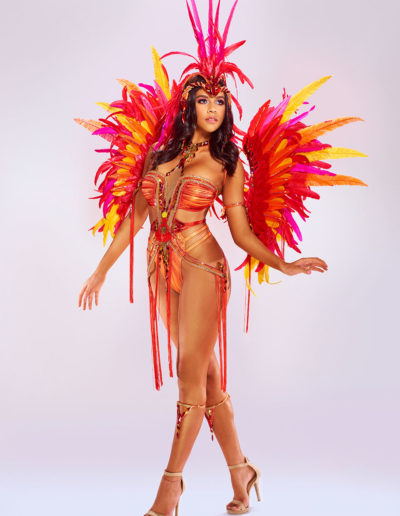 Phoenix - Backline with Medium Headpiece and Backline Backpack Upgrade