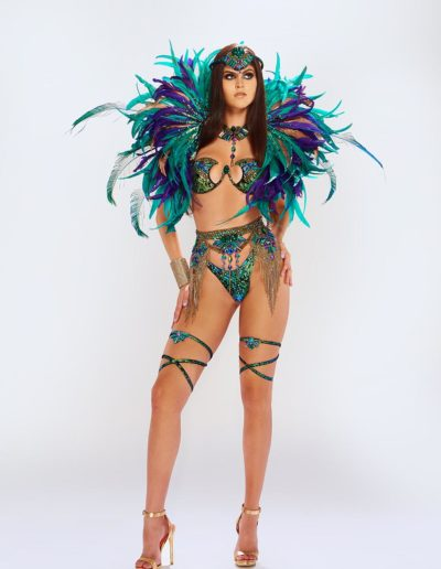 Monsoon - Wirebra with Decorated Bottom and Backline Collar Upgrade